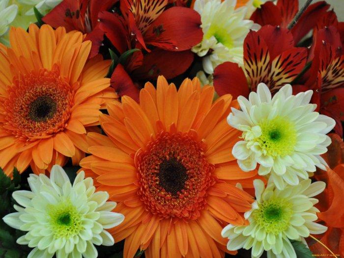 Цветы... Что они символизируют