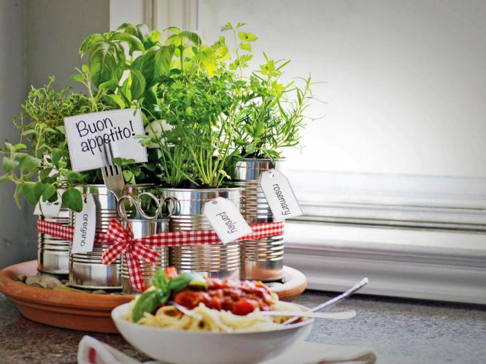 Огород для сальсы, и другие тонкости выращивания овощей для начинающих