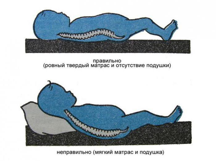 Ортопедические матрасы для детей - обзор, характеристики и особенности выбора