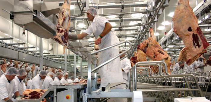 Первичная обработка мяса: последовательность, технология