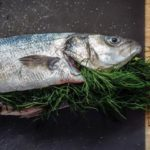 Какую рыбу разводить в Центральной России? Разведение рыбы как бизнес