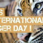 Когда отмечается международный день тигра?