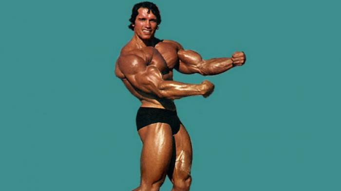 Он знает, что говорит: 10 фитнес-советов от Арнольда Шварценеггера