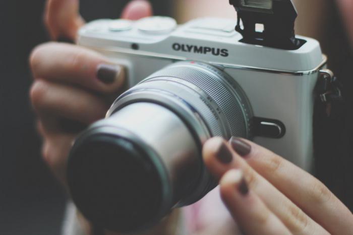 13 профессий для тех, кто любит путешествовать