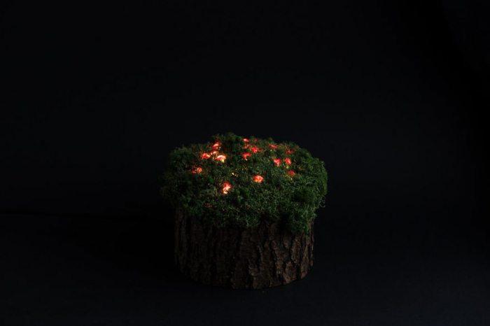 Кристаллы и мох: художники из Литвы создают уникальные светильники