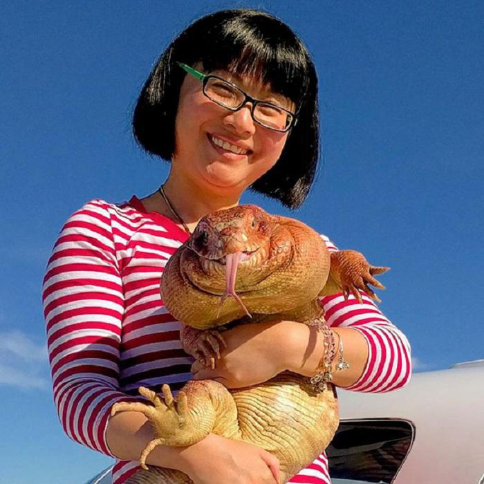 Эта огромная ящерица стала новой звездой интернета