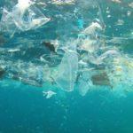 Ученые говорят, что пластиковый мусор добрался даже к Северному полюсу