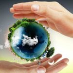 Из каких основных компонентов состоит биосфера? Структура биосферы и ее функции