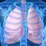Какие мышцы, обеспечивающие расширение и спадение грудной клетки участвуют в процессе дыхания?