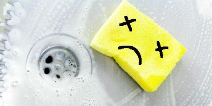 Какой предмет в вашем доме является рассадником бактерий?