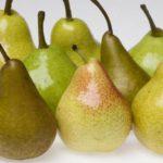 Можно ли замораживать груши? Методы заморозки. Хранение и приготовление