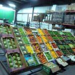 Овощехранилище как бизнес: план, рентабельность, отзывы