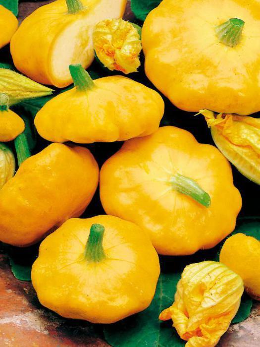 Салат из патиссонов на зиму: рецепты с фото