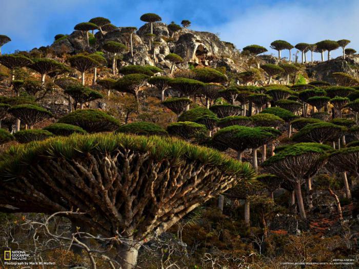 Самые экзотические уголки планеты, в которые стоит отправиться на отдых