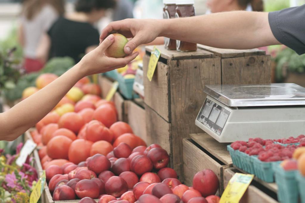 социальная и рыночная экономика