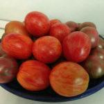 Томат Пасхальное яйцо: описание, особенности выращивания, фото