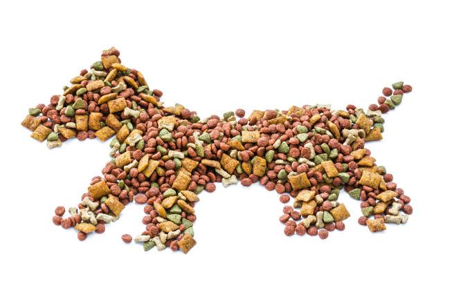 корм органикс для собак с ягненком