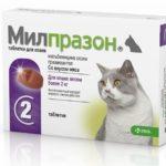Милпразон для кошек: отзывы ветеринаров, инструкция по применению и отзывы