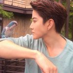 Тайский актер Майк: биография, дата рождения, семья, личная жизнь, фильмы и дорамы