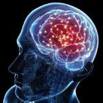 Асимметрия боковых желудочков: симптомы нарушений, причины, диагностика и лечение