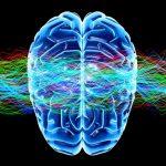 Евгений Вагнер, Как разогнать мозг. Самые эффективные приемы для запуска и разгона мозга: краткое ...