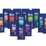 Корм для собак Брит Премиум (Brit Premium): обзор, состав, отзывы