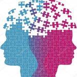 Различия между женщиной и мужчиной: интересные факты, особенности