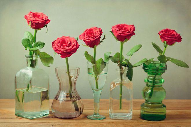 аспирин для цветов комнатных опрыскивание