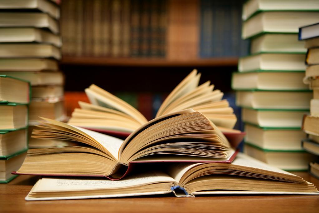 нравственно-эстетическая ценность литературы
