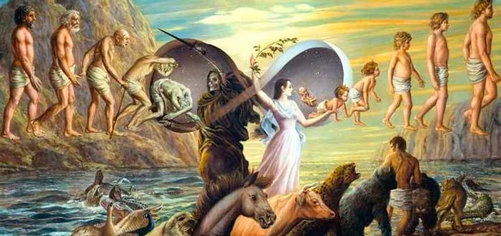 сколько жизней проживает душа человека на земле