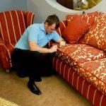 Скрипит диван, как исправить? Рекомендации по ремонту диванов