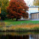 Пейзажные парки: описание, особенности создания, фото