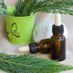 Эфирное масло туи: свойства, особенности применения, противопоказания