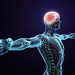 Нарушение нервной системы: причины, симптомы, диагностика, лечение и восстановление