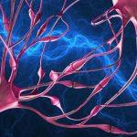 Кататоническое возбуждение: симптоматика, причины, лечение