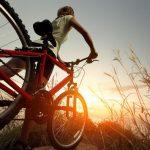 Как спорт влияет на здоровье человека: укрепление иммунитета, улучшение физического и психологическо...