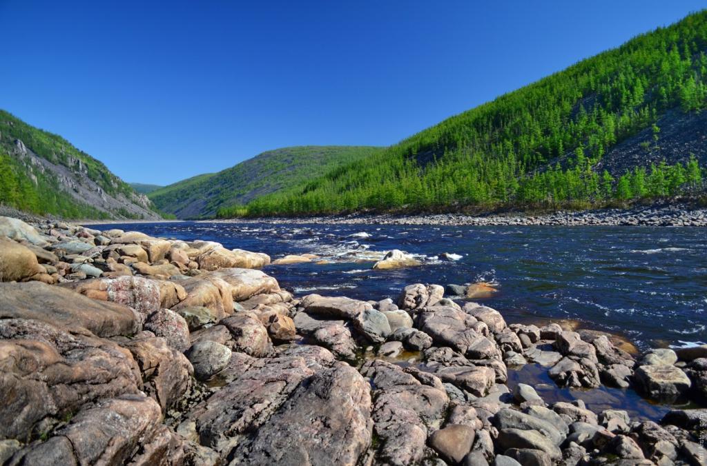 берег реки Олекма