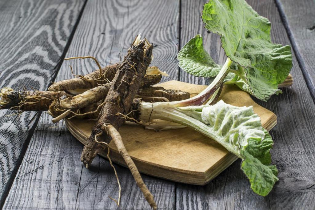 Как сделать настойку корня лопуха на водке