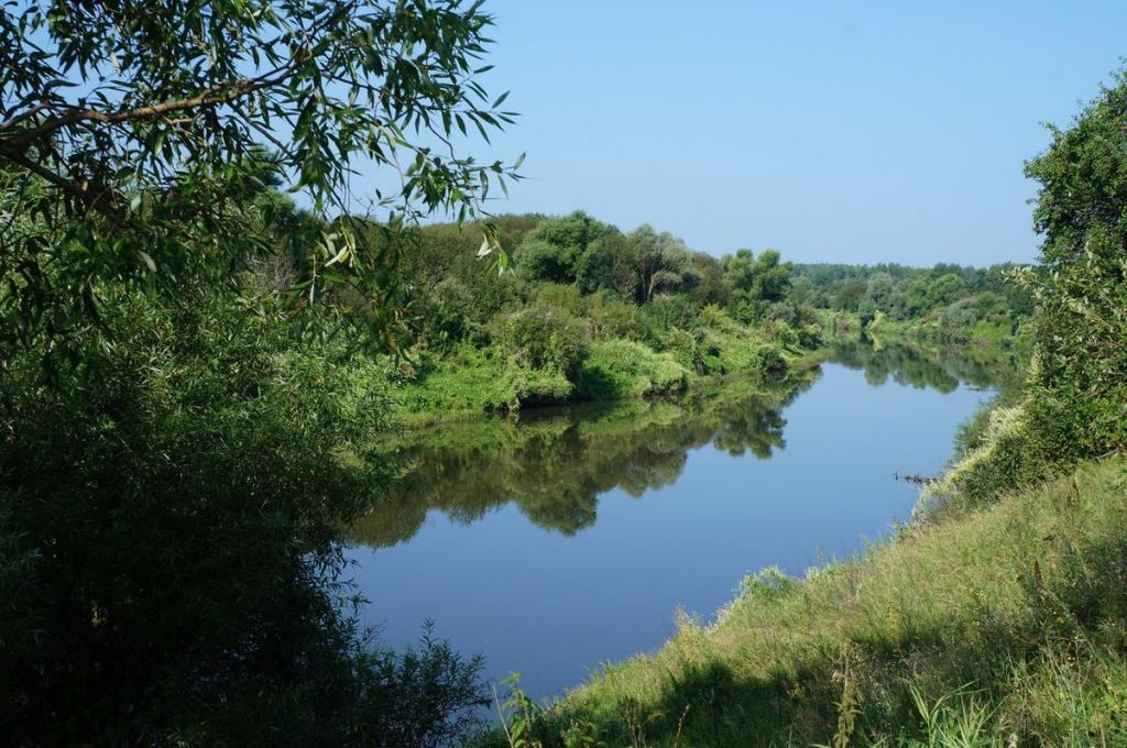 Красота реки