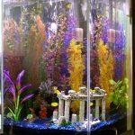 Вертикальный аквариум: как установить и каких рыб поселить