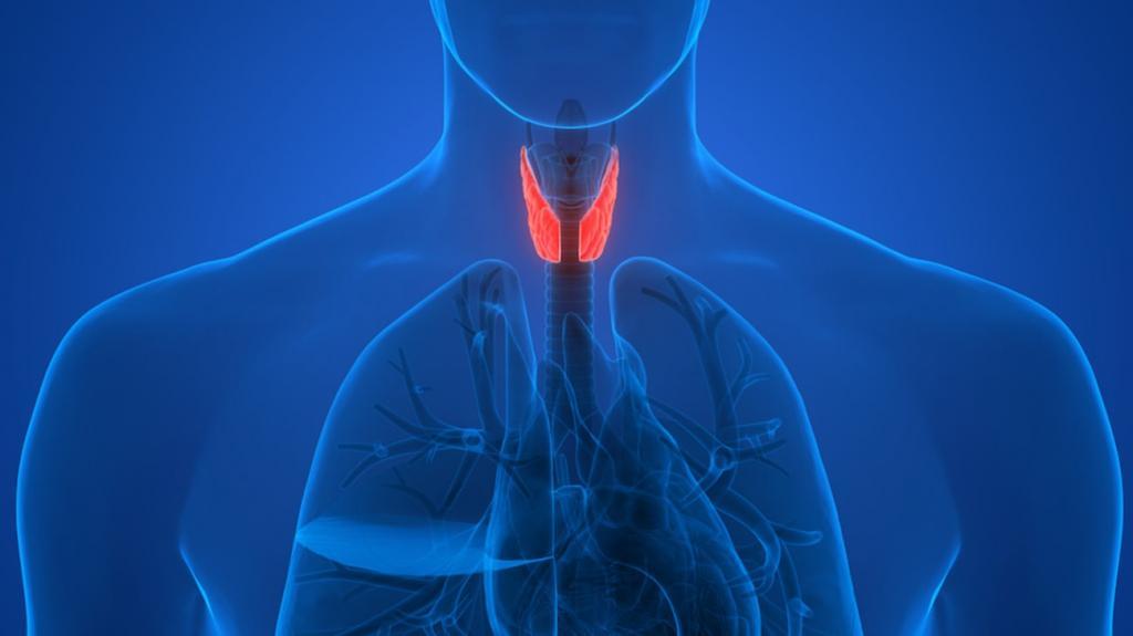 гиперплазия паращитовидной железы справа