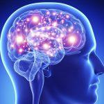 Иконическая память: понятие, время действия, выполняемые функции и эксперимент Сперлинга