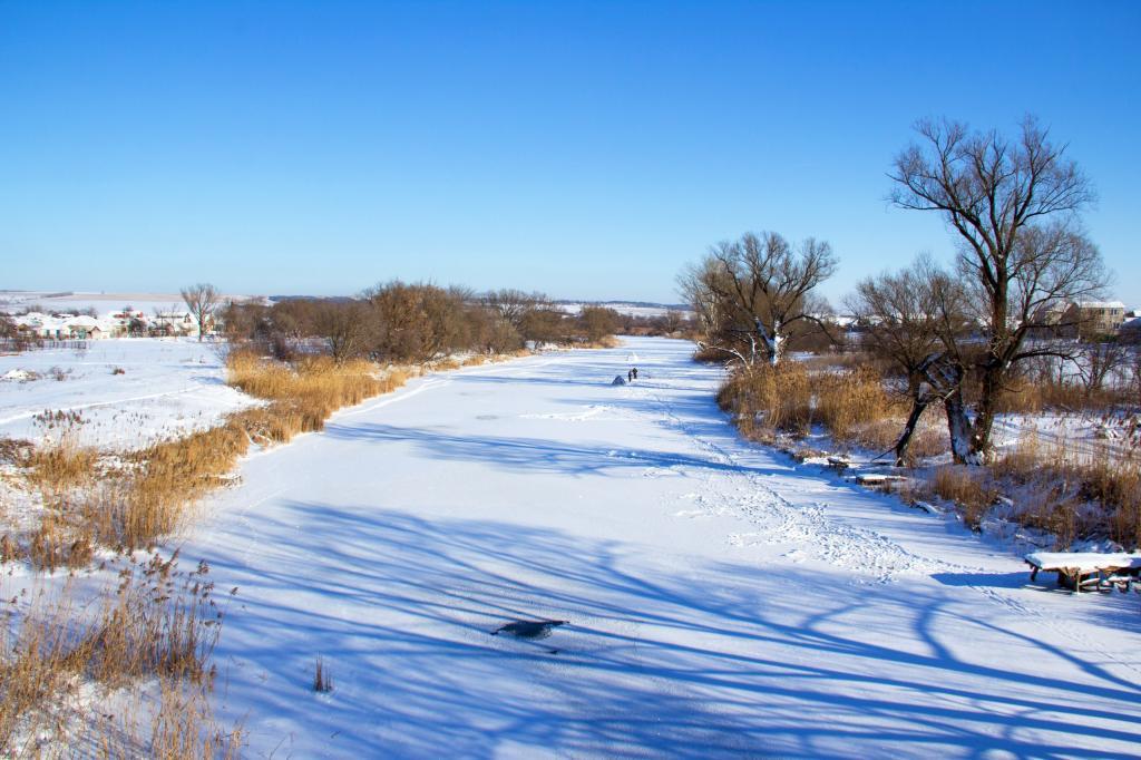река сосна белгородской области