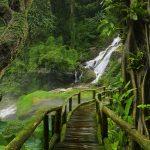 Удивительная природа Таиланда: особенности, фото, описание