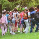 Методика проведения экскурсии: виды, особенности педагогической деятельности