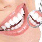 Развитие зуба: этапы формирования, необходимые вещества, нормальное строение зуба и возрастные измен...