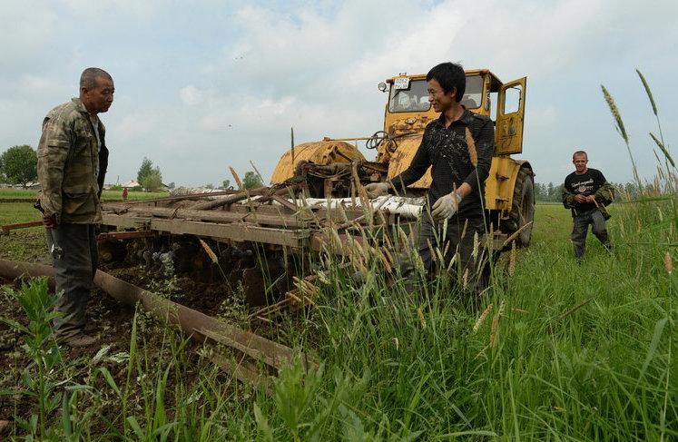 Китайские фермеры на Российских территориях