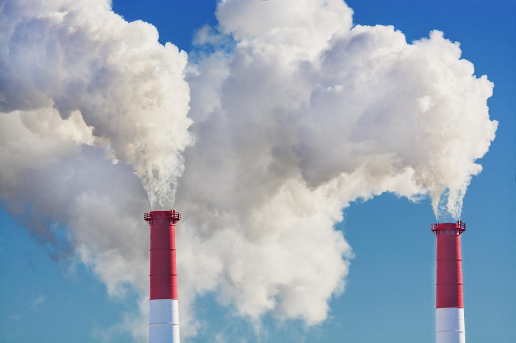Биоиндикаторы загрязнения