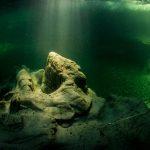 Подводные скалы Мирового океана