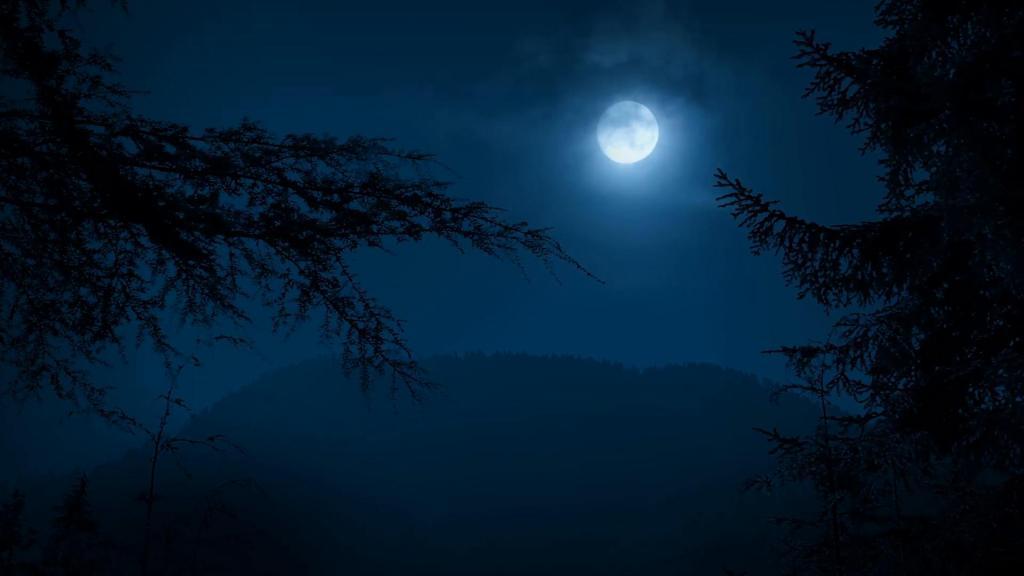 луна и мрак
